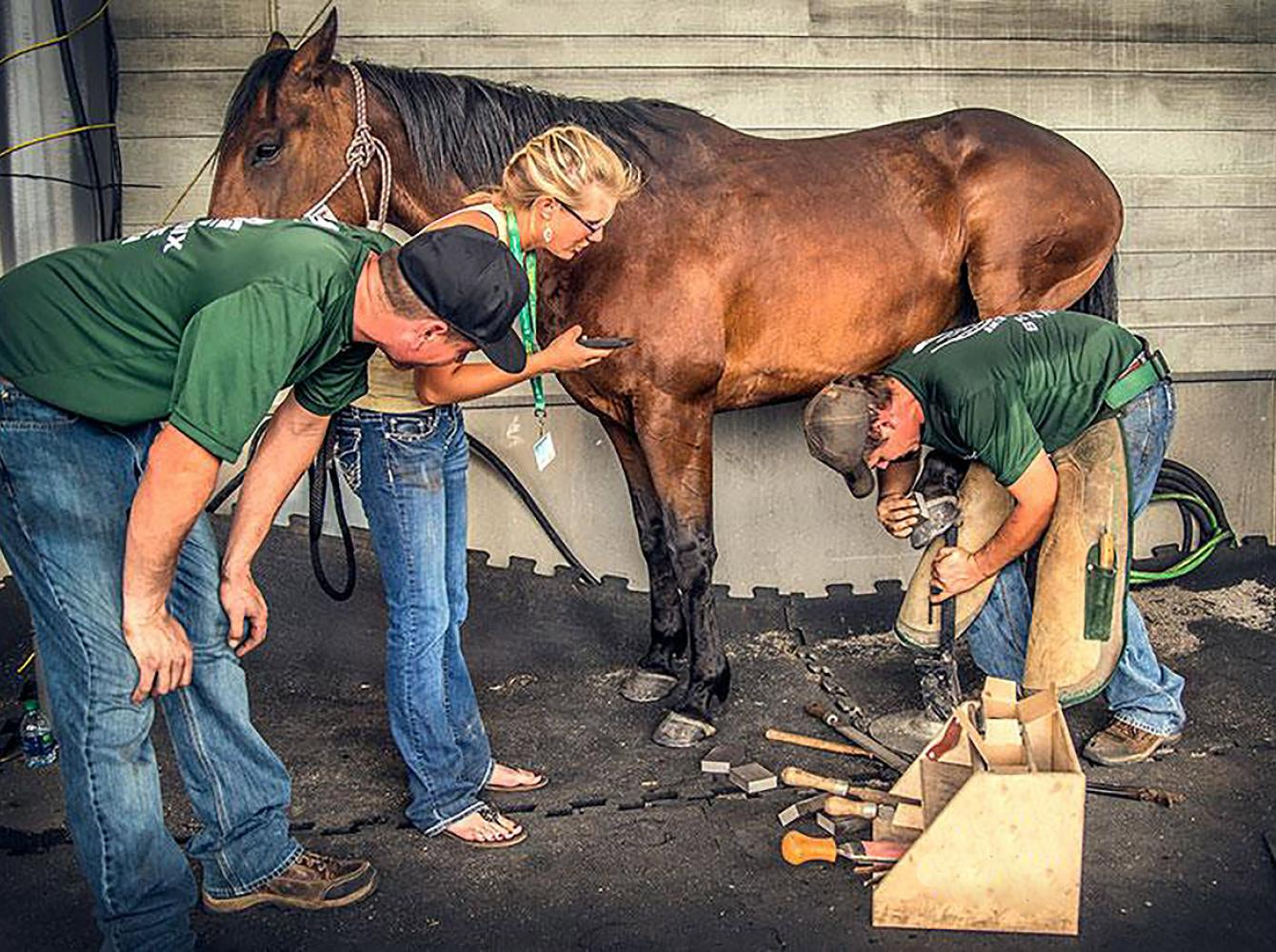 St. Croix farrier advice